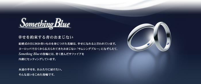 新潟niigata結婚婚約マリッジエンゲージリング結納ブライダル記念品プラチナダイヤモンドシンプルシチズンBROOCHブローチ