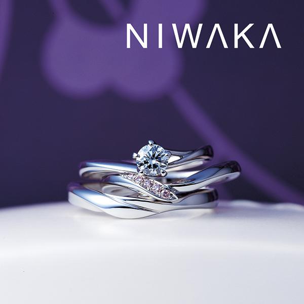 NIWAKA ダルマグラスプレゼントフェア