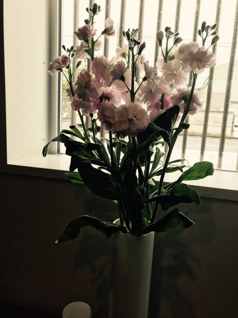 1月26日 花瓶