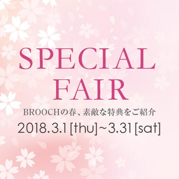 2018 スペシャルフェア 3月