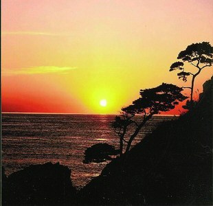 新潟でプロポーズ 笹川流れ 夕日会館