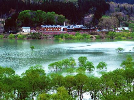 新潟でプロポーズ 白川ダム湖畔