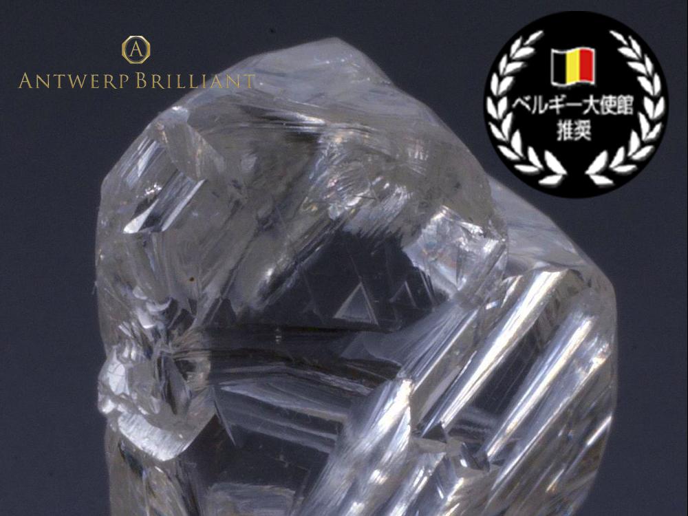 ベルギー大使館推奨のダイヤモンド原石をマスターカッターのベルト氏が研磨