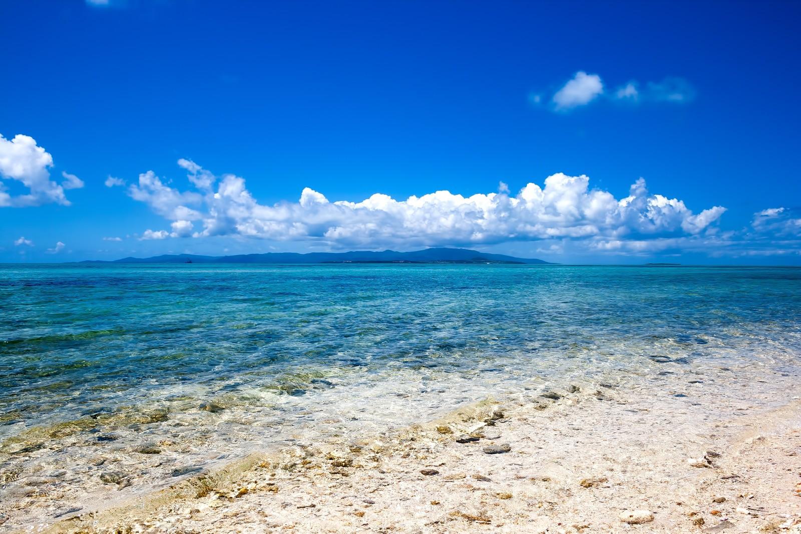 海 夏 新潟 サマー ビーチ