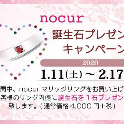 nocur(ノクル)誕生石インサイドセッティングフェア 2020.1