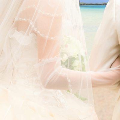 サプライズプロポーズ,プロポーズ,ダイヤモンド,ジュジェリー,俄,NIWAKA,ブローチ,ウエディング,ウエディングドレス