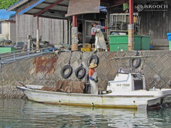 真珠貝は稚貝が大きくなるまで育てて出荷する。上質なパールは母なる海の贈り物