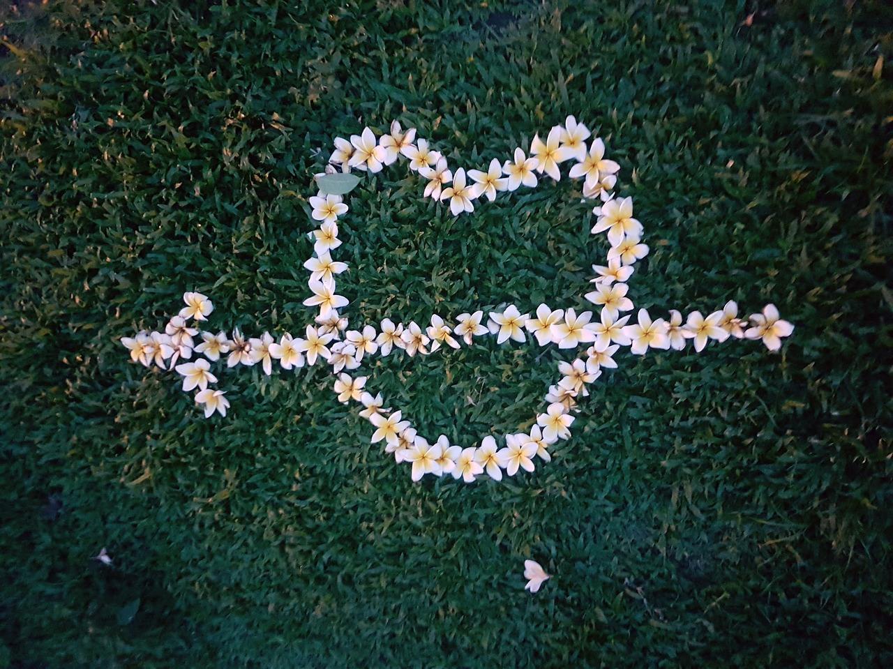 新潟で人気の結婚指輪と婚約指輪 BROOCH Makana(マカナ)  オシャレジュエリーMAKANA ハワイアンジュエリーでプロポーズはあり?婚約指輪の選び方調査